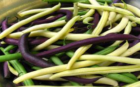 Фасоль (beans)